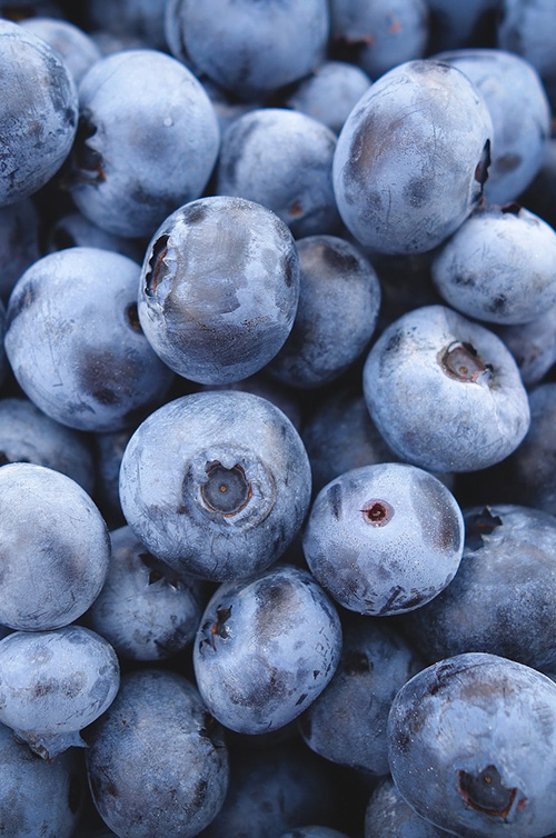 blueberries janet health weight loss