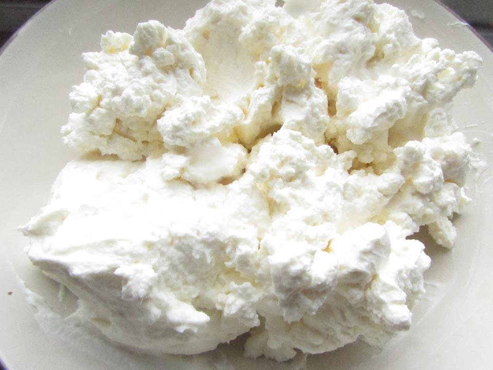 Toronto Nutritionist Janet Zdichavsky Kefir Cheese